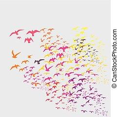 silhouette, vecteur, art, oiseaux, ensembles