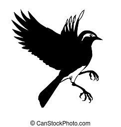 silhouette, vecteur, fond, petit, oiseau blanc