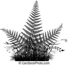 silhouette, vecteur, herbe, fougère