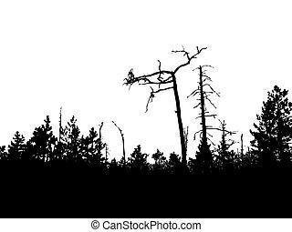 silhouette, vieux, bois, vecteur