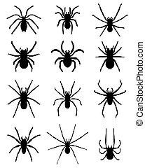 silhouettes, araignées