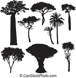 silhouettes, arbre, africaine