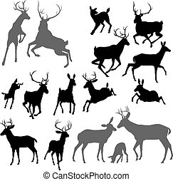 silhouettes, cerf, animal