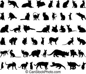 silhouettes, ensemble, chat