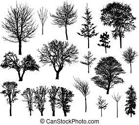 silhouettes, hiver arbre