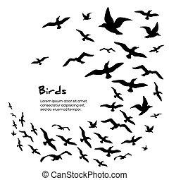 silhouettes, voler, oiseaux