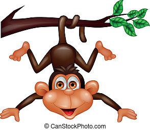 singe, heureux, dessin animé
