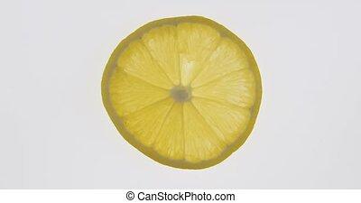 slice., texture., citron, citrus, transparent, rotation, mince