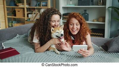 smartphone, adorable, prendre, sofa, utilisation, chiot, amis, selfie, mensonge, heureux