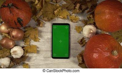 smartphone, robinets, écran, swipes, girl, décorations, automne, vert