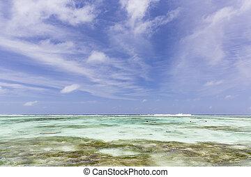 snorkelers, seychelles, digue, la