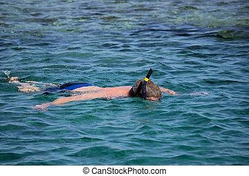 snorkeller