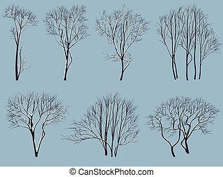 snow., feuilles, sans, arbres