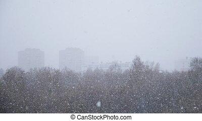 snowfall., tomber, premier, neige