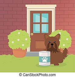 soin, chouchou, brun, boîte, nourriture, jardin, chien