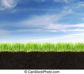 sol, bleu, terre, herbe, sky., section transversale