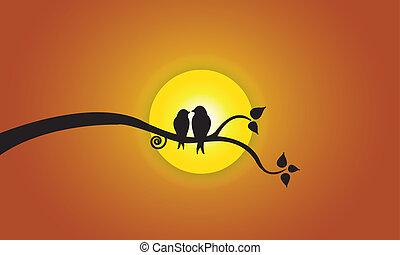 soleil, soir, ciel, aimer oiseaux, orange