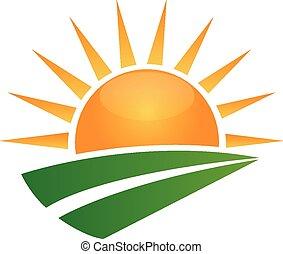 soleil, vert, route, logo