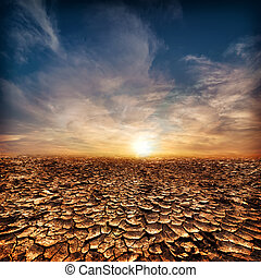 solitaire, concept., global, ciel, soir, coucher soleil, chauffage, sous, sécheresse, déserter paysage, toqué
