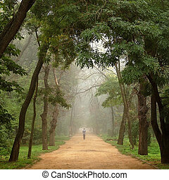 solitaire, loin, arbres, va, route, homme