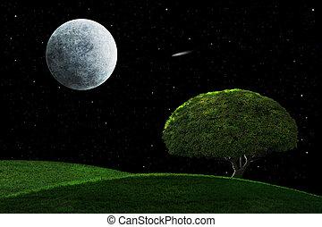 solitaire, nuit, clair lune, arbre