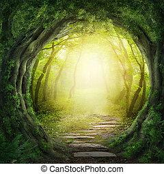 sombre, forêt, route
