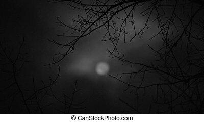 sombre, histoire, horreur, lune
