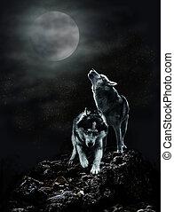 sombre, paire, loups, nuit, lune