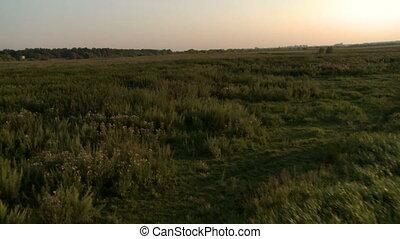 sommet, champ, herbe verte, landing., vue