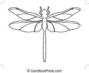 sommet, libellule, vue