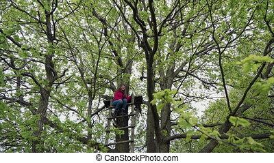 sommet, sourires, femme, bois, jeune, puissant, assied, chêne, feuillage, escalier