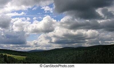 sommet, timelapse couvre, forêt, vue