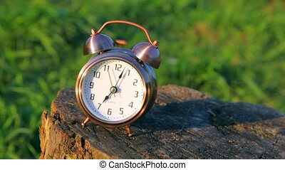 sonner, classique, horloge, reveil, contre, talon, herbe