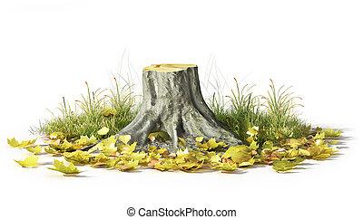 souche, feuilles, isolé, illustration, white., 3d