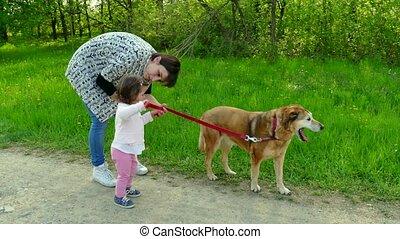 sourire, fille, chien, maman