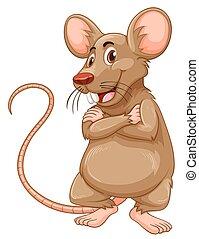 souris, fourrure, brun