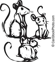souris, trois