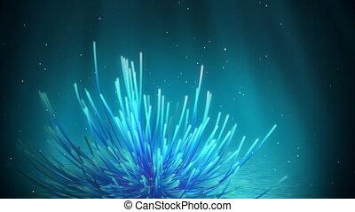 sous-marin, étoile plume, boucle