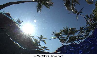 sous-marin, inhabituel, piscine, arbres., ciel, effet, eau, placé, appareil photo, paume, filmer, marques, natation