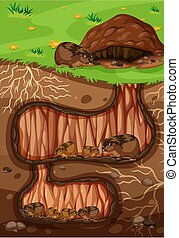 souterrain, vivant, lemming, famille