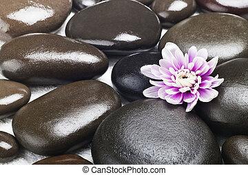 spa, pierres