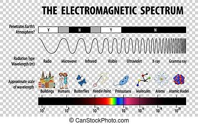 spectre, fond, transparent, diagramme, électromagnétique, science