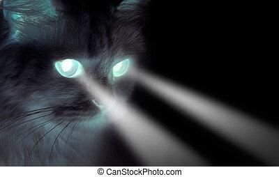 spooky, yeux, briller, chat noir