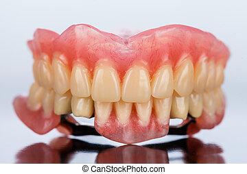squelettique, dentaire, -, prothèse, vue frontale