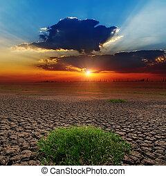 stérile, la terre, sur, dramatique, coucher soleil