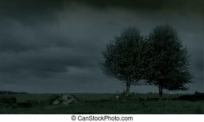 storm., nuit