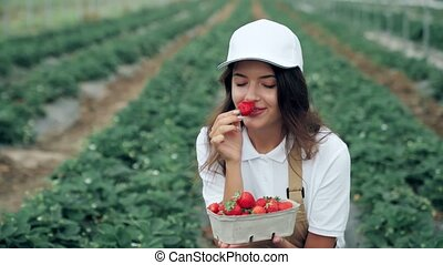 strawberry., juteux, manger, frais, jeune femme