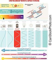 structure., nocivité, spectrum., électromagnétique, waves:, illustration, infrarouge, diagramme, fréquence, vecteur, vague, longueur onde