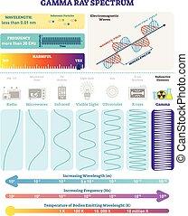 structure., rayons, radioactif, nocivité, spectrum., électromagnétique, waves:, illustration, vague, diagramme, fréquence, vecteur, gamma, longueur onde