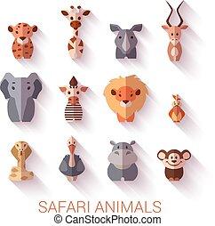 style., ensemble, plat, animals., safari